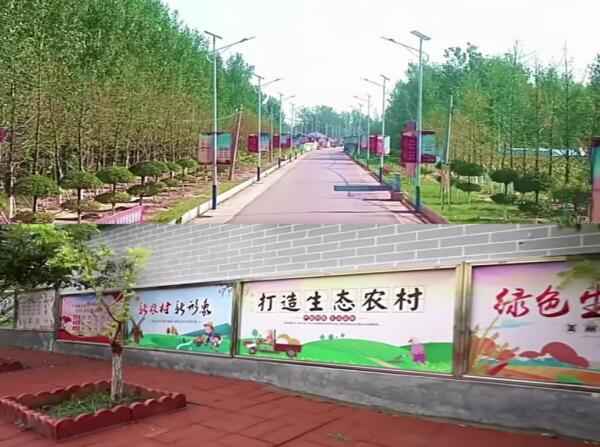 仇庄乡西尤庄村开展美丽庭院示范创建工作成果显著